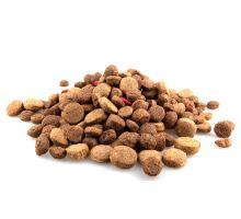 Jak vybrat ty pravé granule pro vašeho pejska?